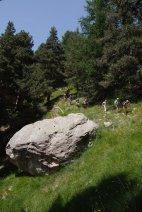 2015-07-19-Altiplus-Plan_Tendasque-IMG_0218