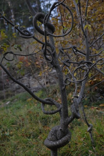 2015-10-25-Altiplus-Viroulet-Photos_Laurent-01