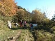 Altiplus, Club randonnée dans la 06, 29 octobre 2016 : le Gramondo; cheval blanc