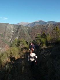 Altiplus , club randonnée dans le 06, 11 décembre 2016 : Le Mont Saint Michel et le circuit des crèches de Luceram
