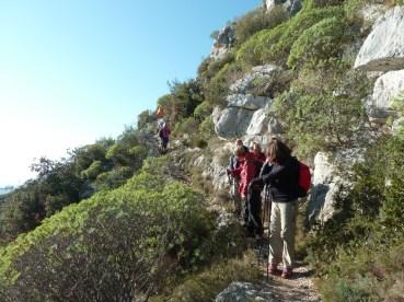 ALTI+ Club Randonne dans le 06 - Le Mont Bastide (rando écolo) 18/12/2016 descente sur EZE