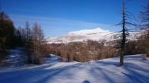 Le Mont Mounier dans une clairière où s'allonge les ombres des Mélèzes