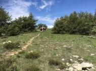 Altiplus 3 juin 2018 Tête de Pibossan (14)