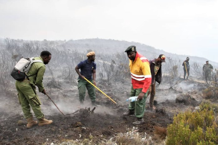 Le Kilimandjaro en feu ! Des volontaires luttent contre l'incendie