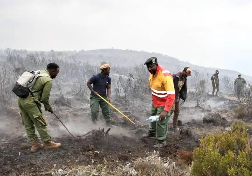incendies kilimandjaro