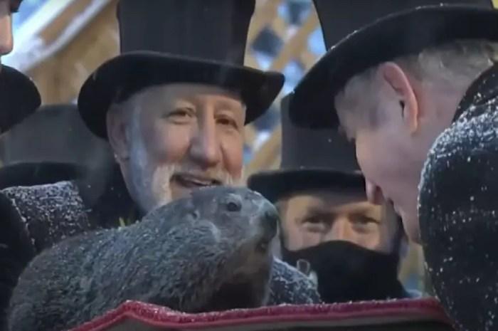 La marmotte annonce six nouvelles semaines d'hiver rigoureux !