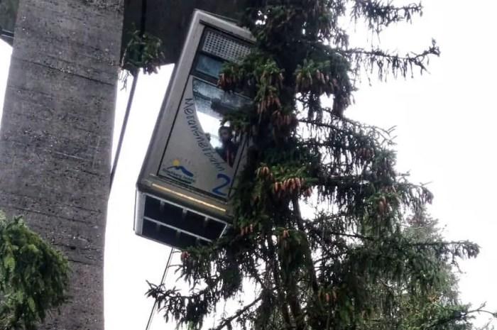 Un arbre s'abat sur une cabine de téléphérique, plus de peur que de mal !