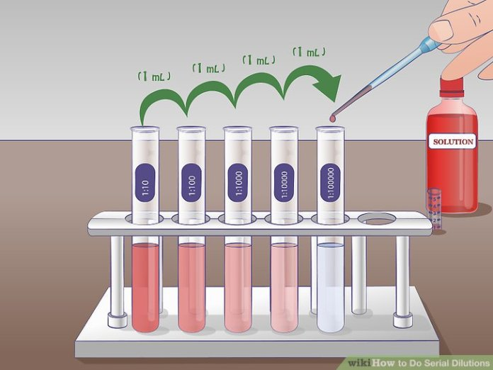 Image result for serial dilution 1:100