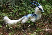 Photo of दुनिया के 5 सबसे अजीबो-गरीब जानवर, जिन्हें देख कर आप यकींन नहीं करेंगे