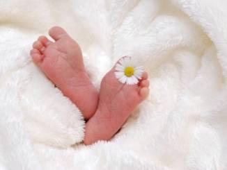 Gioia prima nata all'ospedale di Branca, si pensa all'Epifania E' venuta alla luce il 3 gennaio alle ore 11,43