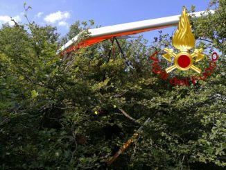 Precipita con il parapendio vicino al Monte Cucco, in ospedale