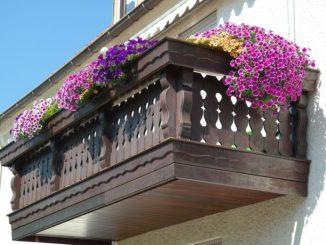 Torna il concorso Balconi, Giardini e negozi in Fiore