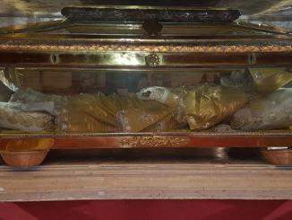 Solennità di San Rinaldo a Nocera Umbra in concattedrale