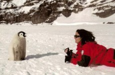 Antartide Lucia Simion