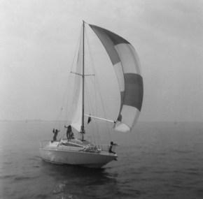 Barca a vela planante Exocetus Volans