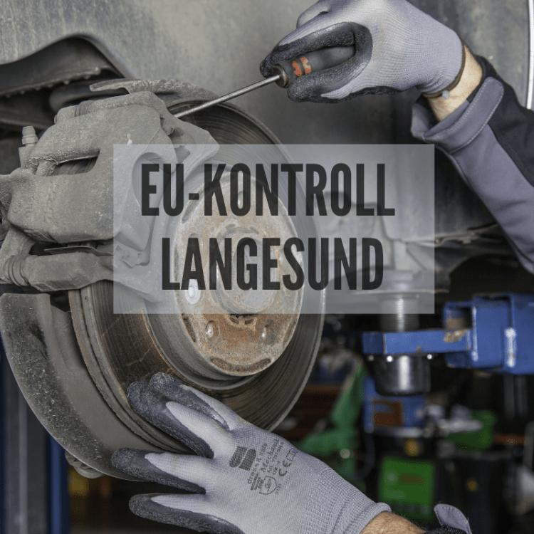EU kontroll i Langesund