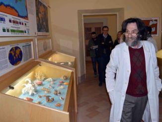 Malakos, il museo delle conchiglie, su Google Arte e Cultura