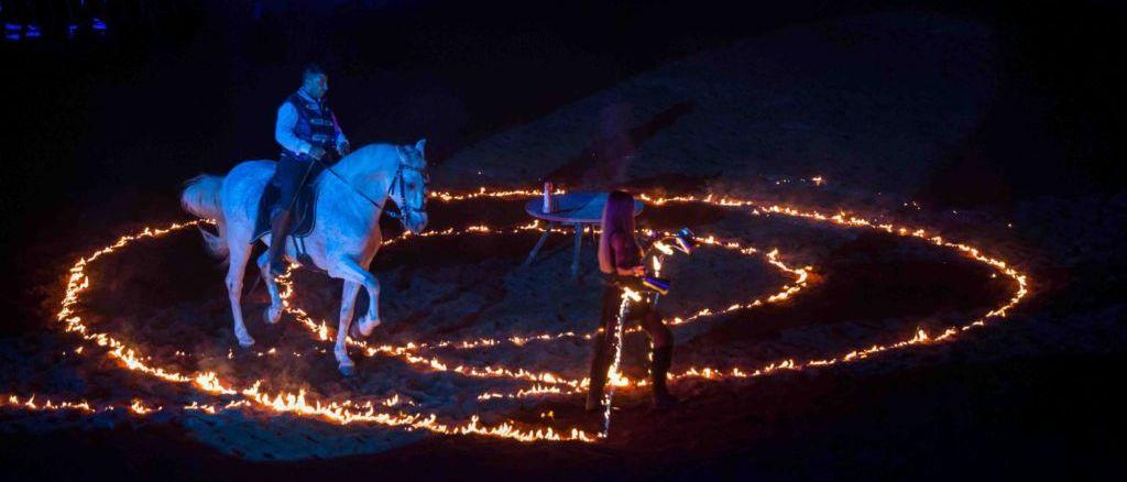 Tutto esaurito per il Gala Equestre, lo show di Belloni e Messina conquista il pubblico