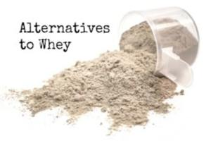 the top 5 best alternatives to whey protein - try these out