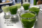 Battle of the Supergreens: Wheatgrass vs Spirulina [2019 Update]