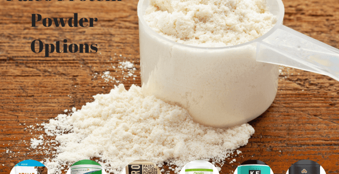 Top 6 Best Paleo Protein Powder Options