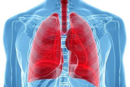 Risultati immagini per la respirazione