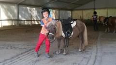 Paardrijlessen in de manege van Pomarance