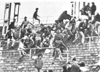 Toro, 1981