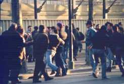 Fiorentina Roma 90/91