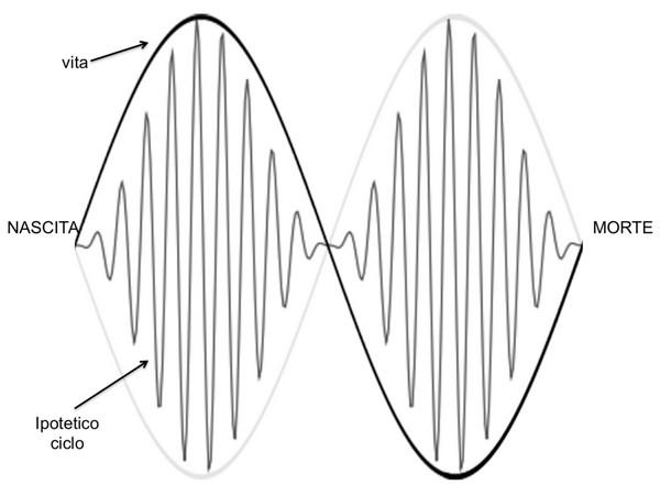 Fig. 4-AM