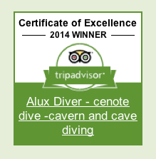 Certificate-excellence-tripavisor-diving-aluxdivers