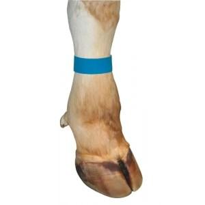 Märkmelint jalale sinine