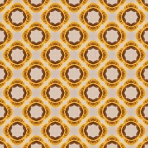 dumplings pattern print