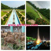 जमशेदपुर जुबली पार्क – जमशेदपुर भारत आकर्षक स्थल