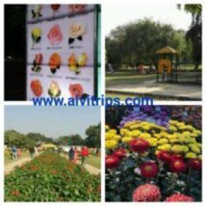 चंडीगढ़ के दर्शनीय स्थल के सुंदर दृश्य
