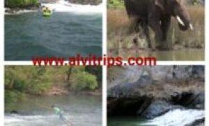 दांदेली कर्नाटक में अभ्यारण्य, ट्रैकिंग, राफ्टिंग, सहासी गतिविधियों का स्थान