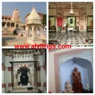 शौरीपुर नेमिनाथ दिगंबर जैन मंदिर