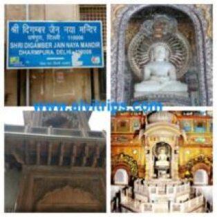 श्री दिगंबर जैन नया मंदिर धर्मपुरा दिल्ली