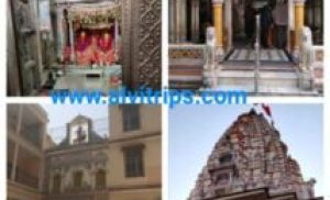 सकराय माता मंदिर या शाकंभरी माता मंदिर सीकर राजस्थान हिस्ट्री इन हिंदी