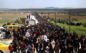 """لم يفت الأوان لوقف """"الجنون"""" في غزة"""