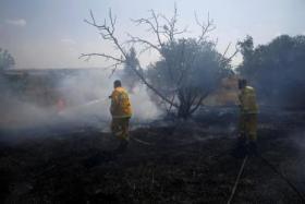 15 حريقًا بمستوطنات غلاف غزة اليوم بطائرات وبالونات حارقة