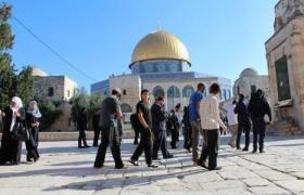 56 مستوطنا يقتحمون باحات المسجد الأقصى بحراسة مشددة