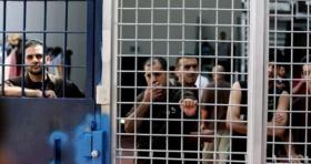الصراصير تغزو أقسام الأسرى في سجن النقب