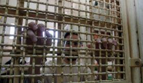 اللواء أبو بكر: حكومة الاحتلال تستغل كل الظروف للتفرد بالأسرى والانتقام منهم