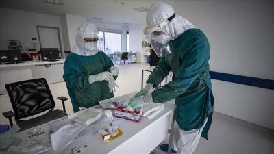 الصحة بغزة: 12 حالة وفاة و1015 إصابة جديدة بفيروس كورونا وتعافي 745