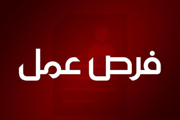 بلدية غزة تعلن عن حاجتها لتشغيل 36 باحثا ميدانيا وفق هذه الشروط