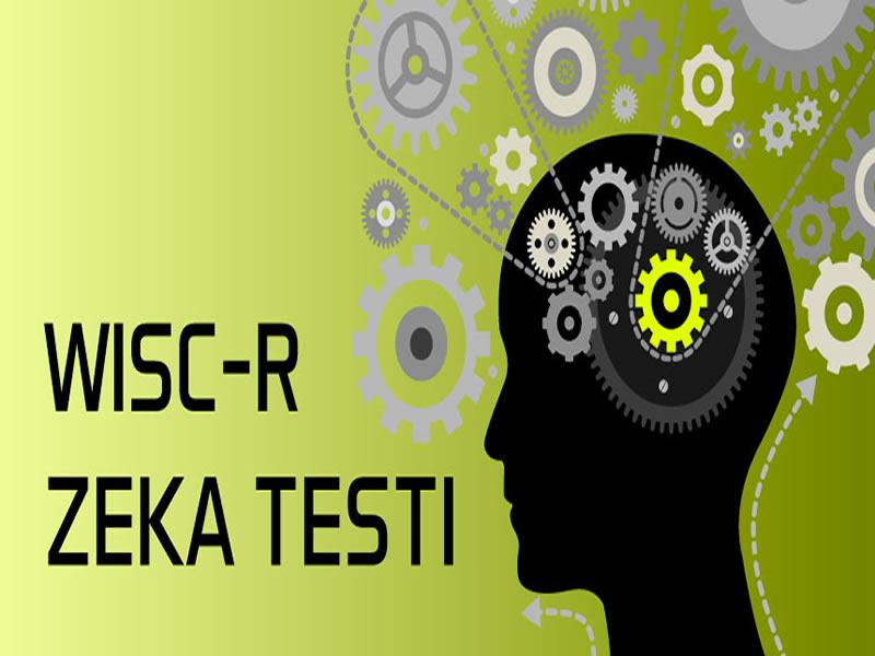 Wısc-R Zeka Testi Uygulayıcı Sertifika Programı