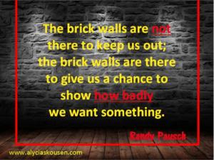 Setback & Obstacles
