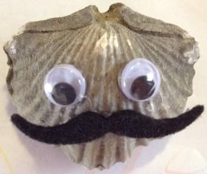 Mr. Platystrophia