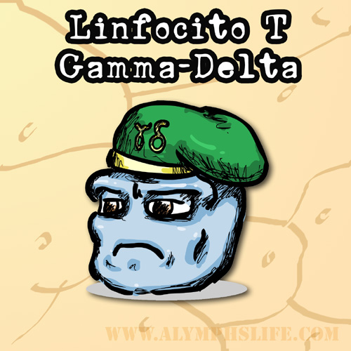 célula T gammadelta